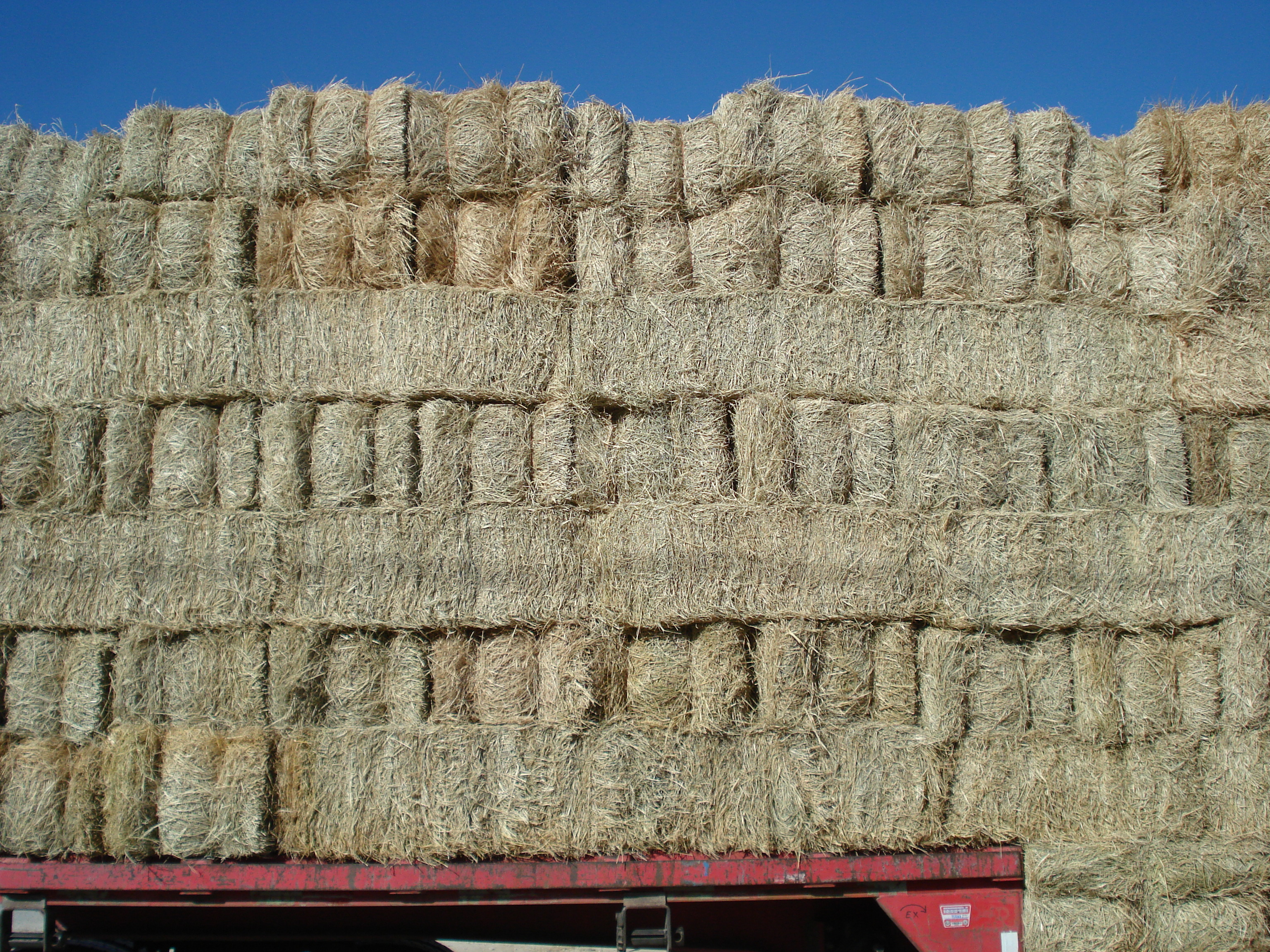 Square Coastal Bales